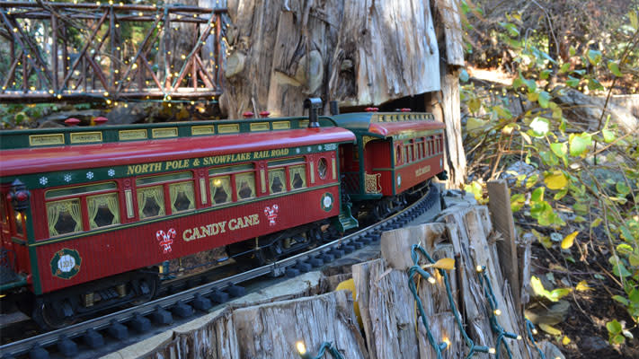 The Morris Arboretum Garden Railway rides along stainless steel tracks.