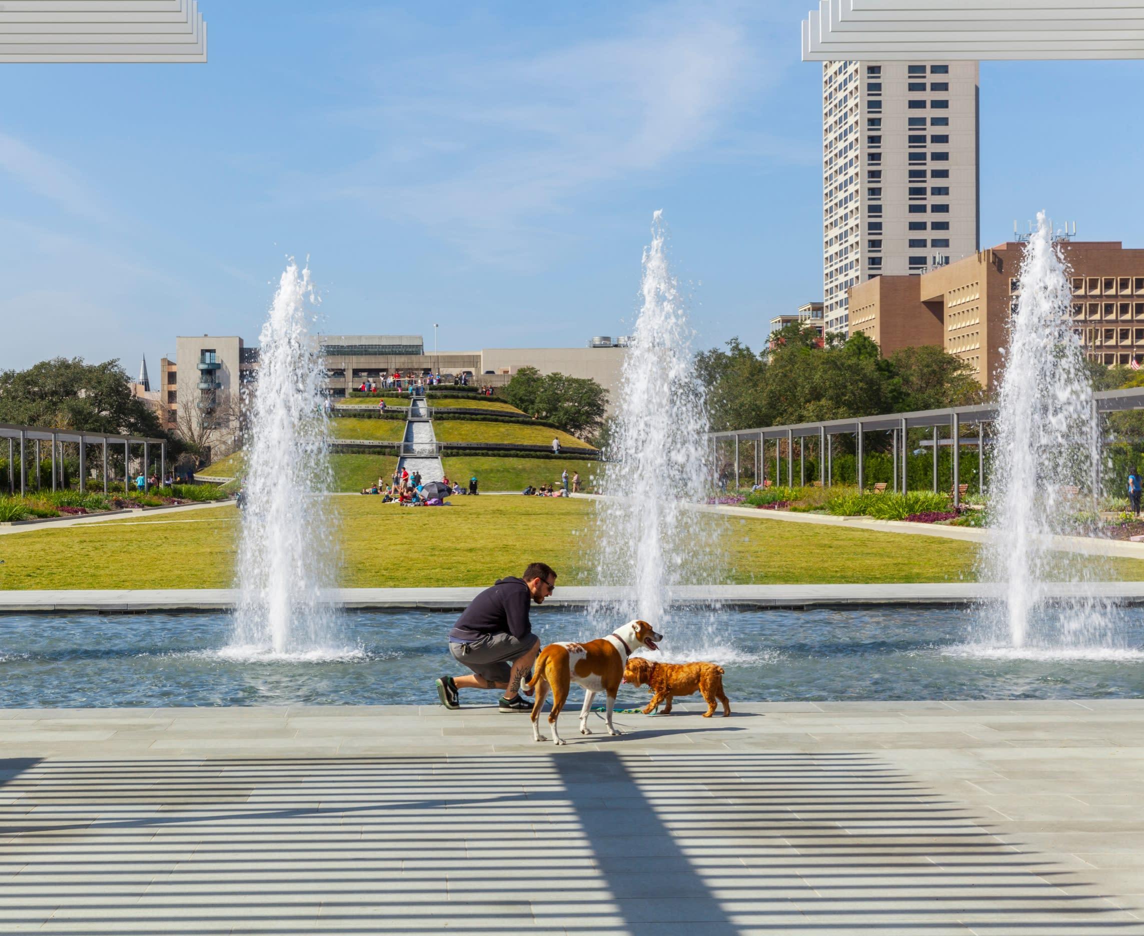 Man and dogs McGovern Centennial Gardens in Houston