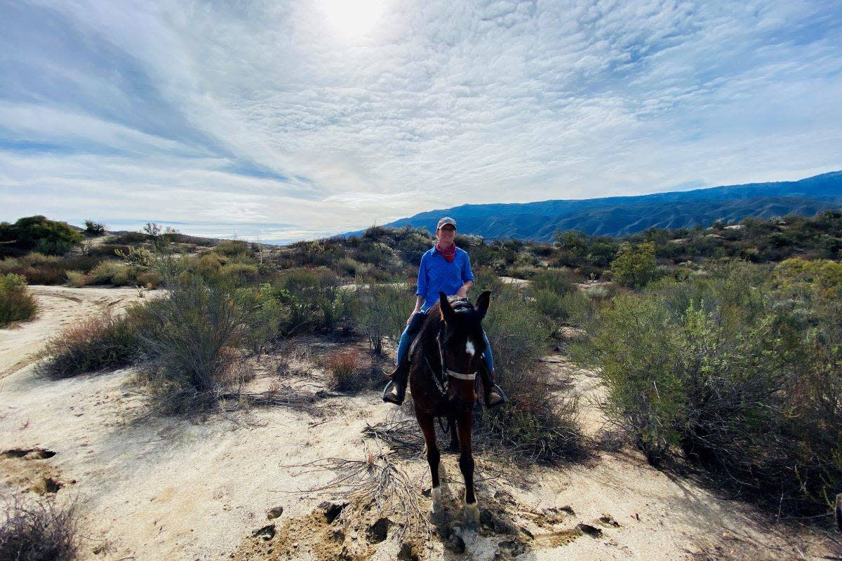 T.J. Davis is the owner of Saddle Up Ranch atop Sephira in the hills above Aguanga. (Julie L. Kessler/Special to S.F. Examiner)