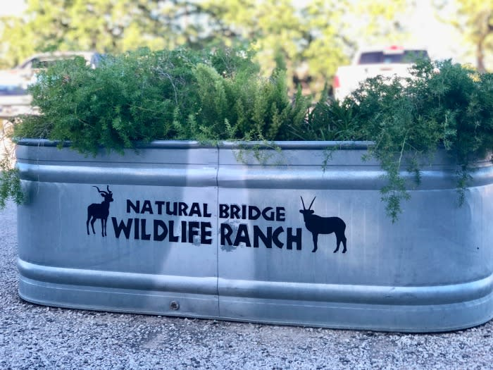 Natural Bridge Wildlife Ranch