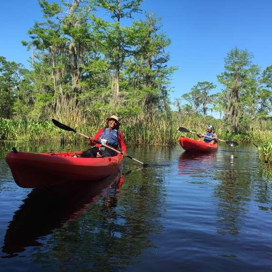 A New Orleans Kayak Swamp Tour