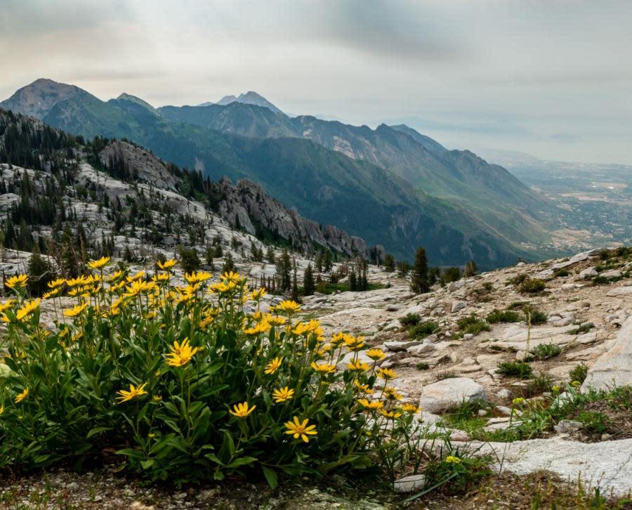 Lake Hardy Trail Views in Utah Valley