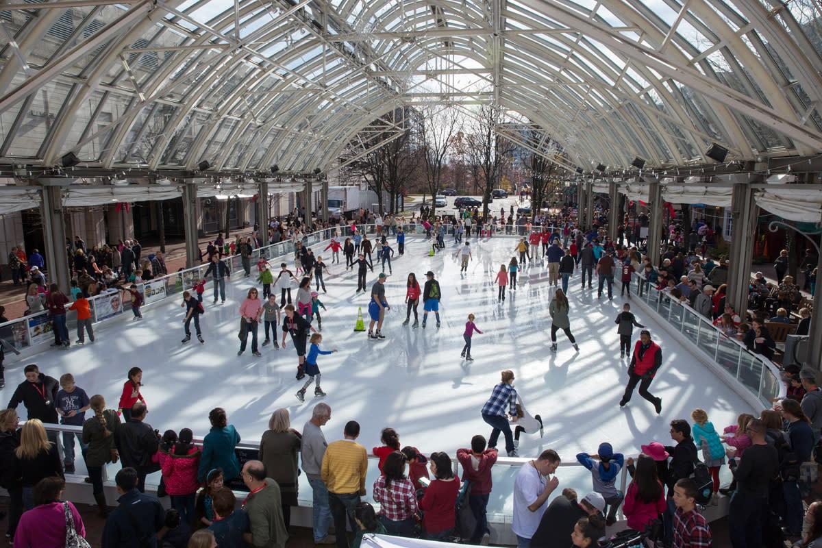 Reston Ice Skating