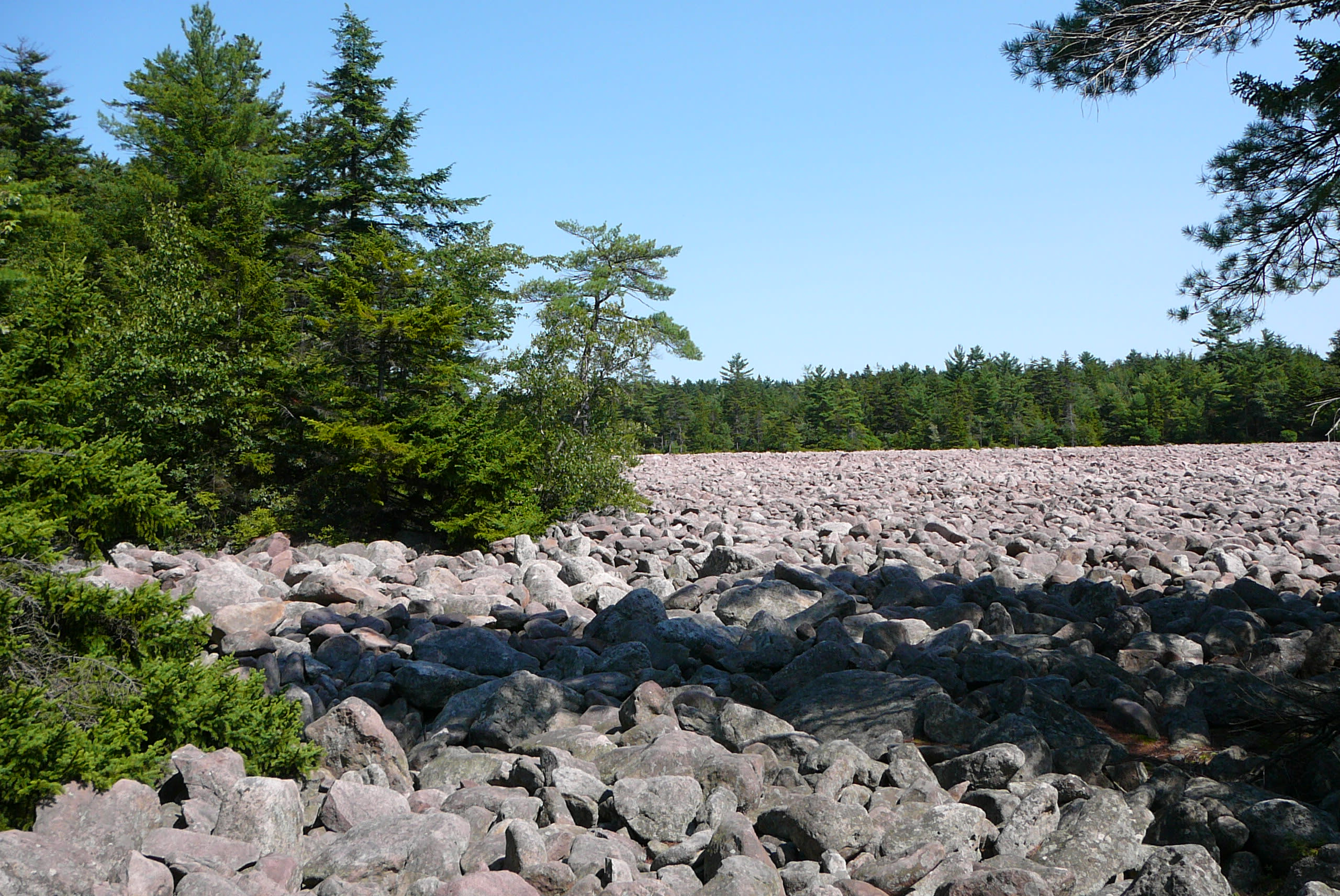 Scenic Boulder Field at Hickory Run State Park