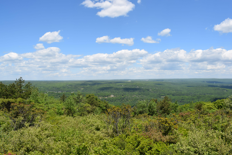 Scenic View Big Pocono State Park