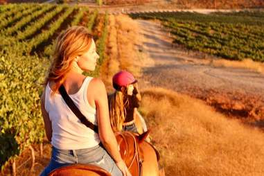 Wine Country Trails By Horseback