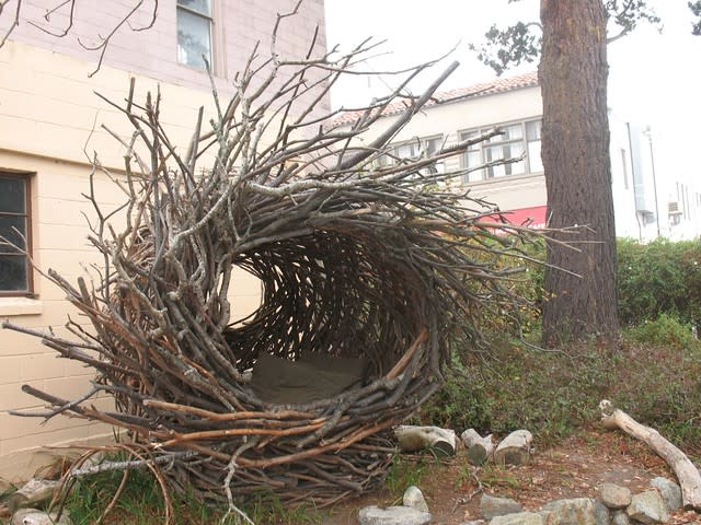 Restful nest - Pacific Grove Museum