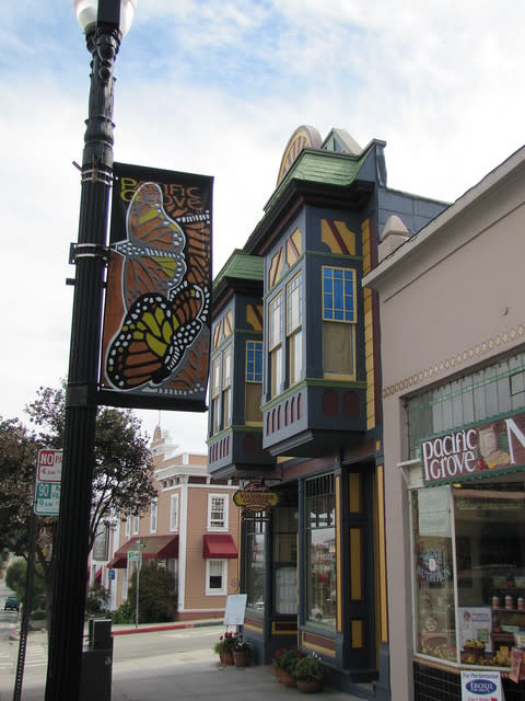 """Pacific Grove aka """"Butterfly Town U.S.A."""""""
