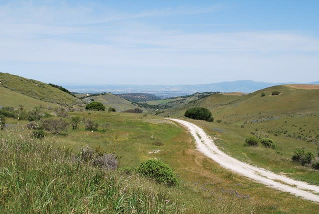 Fort Ord trail