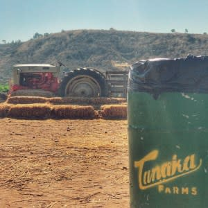 Tanaka Farms is nearly 80 years old and has a long standing California History. You can pick vegetables and go on tours