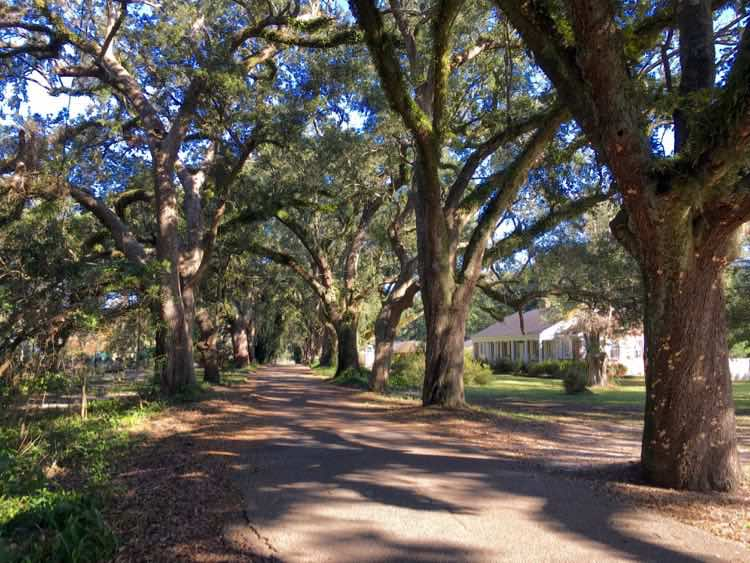 oak street in Moss Point, Pascagoula, Mississippi
