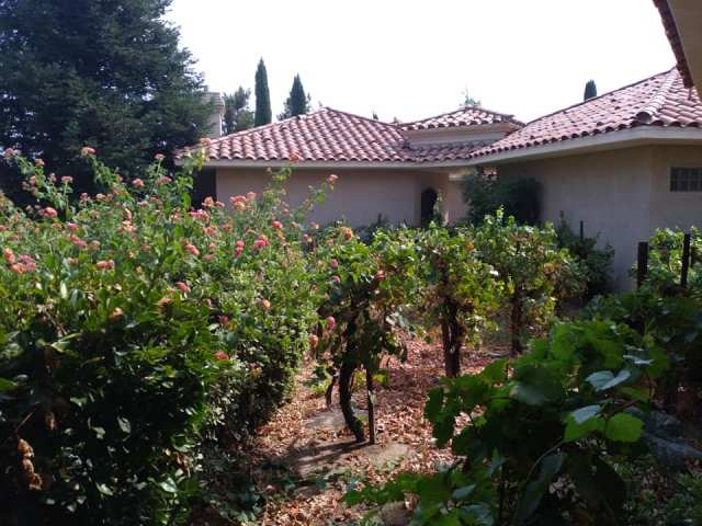 Red roof villas at South Coast Winery, Resort and Spa in Temecula Valley, California