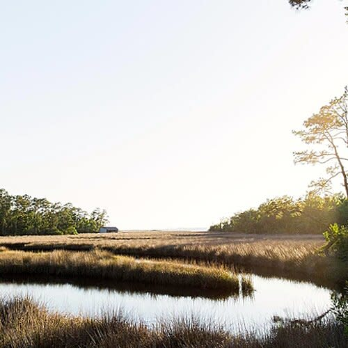 America's largest national seashore practically surrounds Ocean Springs. On the mainland, the Davis Bayou Area is great for birding and spotting armadillos. Offshore, a seasonal ferry runs from nearby Gulfport to West Ship Island, which offers quiet, bone