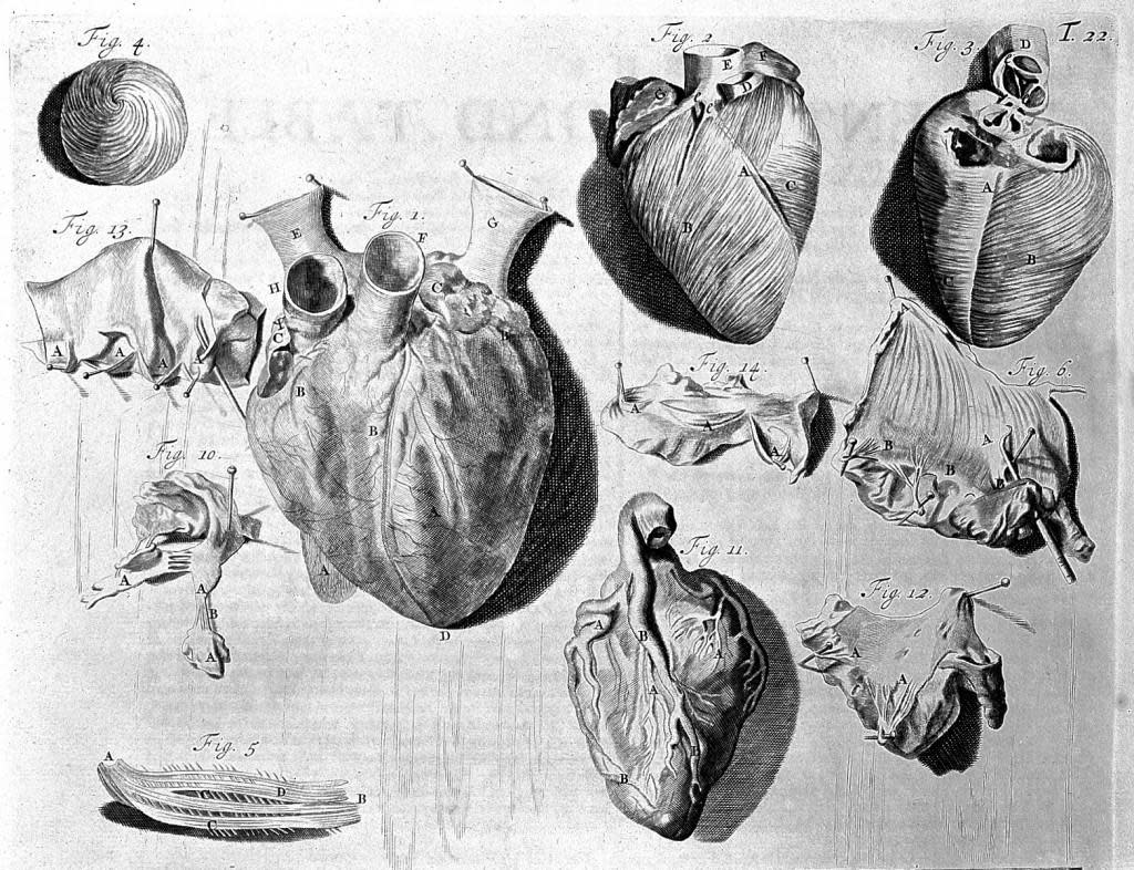science museum heart