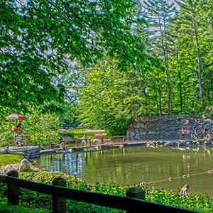 Fillmore Glen Swimming