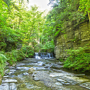 Fillmore Glen Waterfall on Gorge Trail