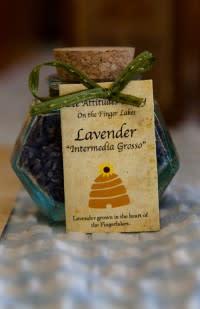 Lavendar from Bee Attitudes Honey