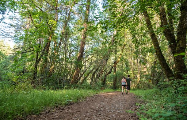 Hiking at Bothe State Park in the Napa Valley