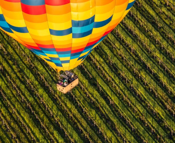 Hot Air Balloon in Napa Valley vineyard