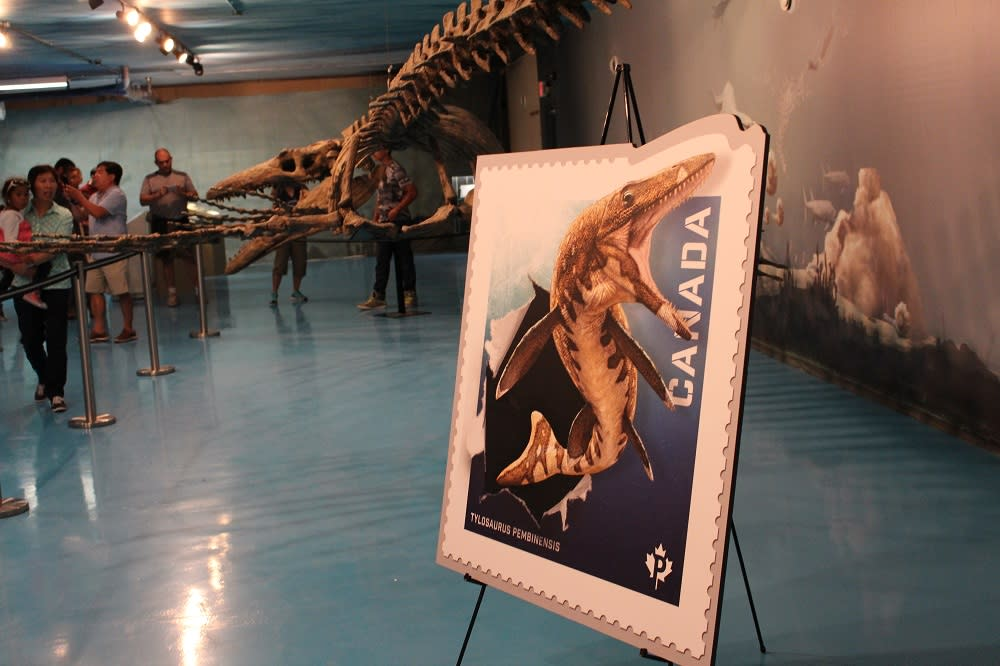 Bruce the Mosasaur at the Canadian Fossil Discovery Centre in Morden, Manitoba