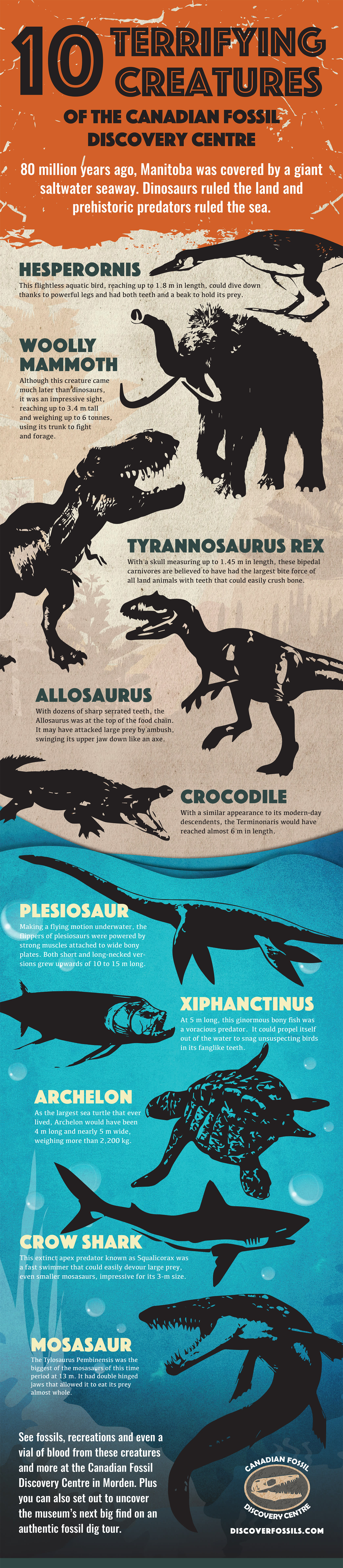 10 terrifying creatures of the Canadian Fossil Discovery Centre