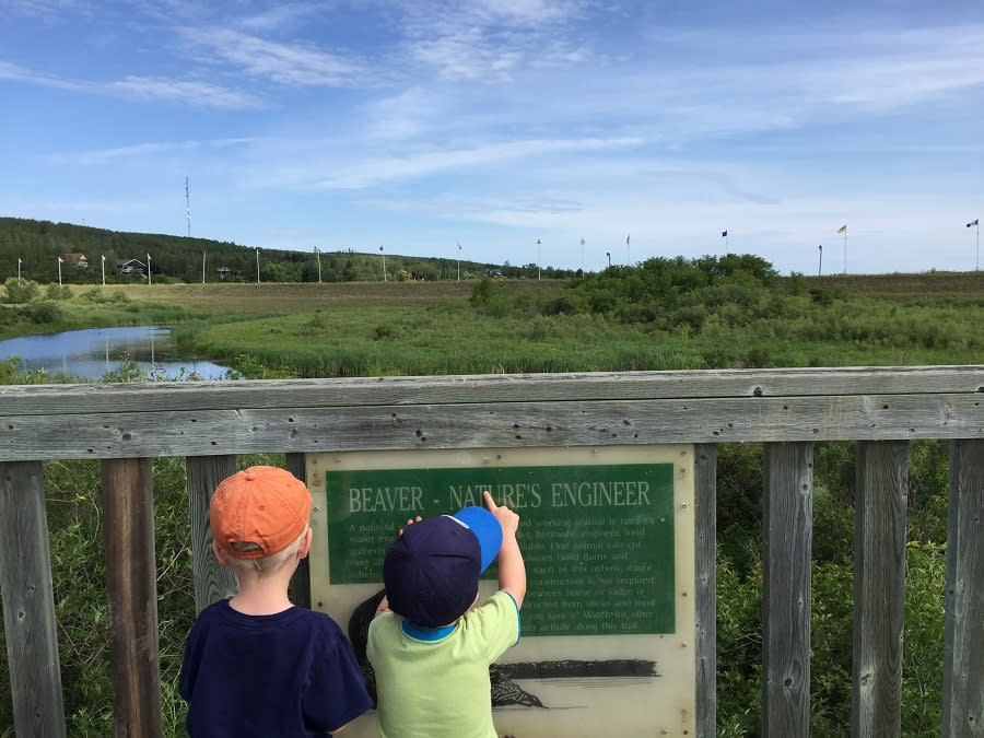 Lookout Tower on the Oxbow Trail in Minnedosa