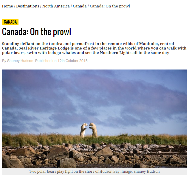 Canada On The Prowl