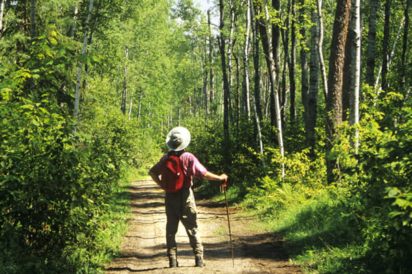 The Whiteshell has thousands of kilometres of trails.