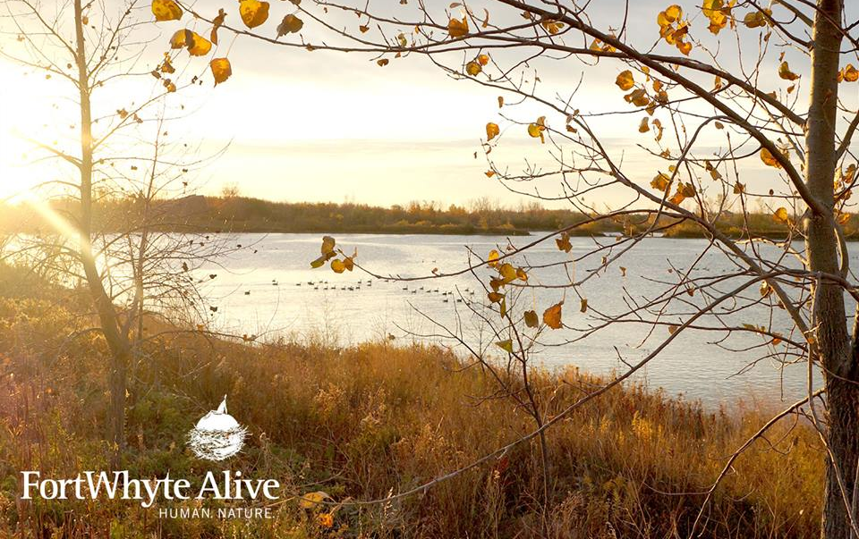 FortWhyte Alive Autumn