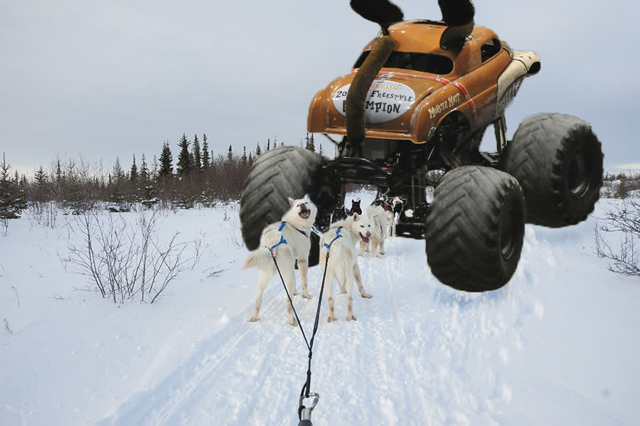 Monster Truck Monster Mutt goes dog sledding in Manitoba