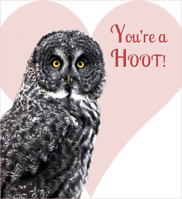 Happy Valentine's Day from Travel Manitoba