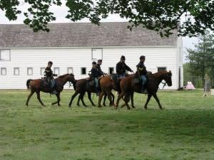 Fort Scott National Historic Site Horses