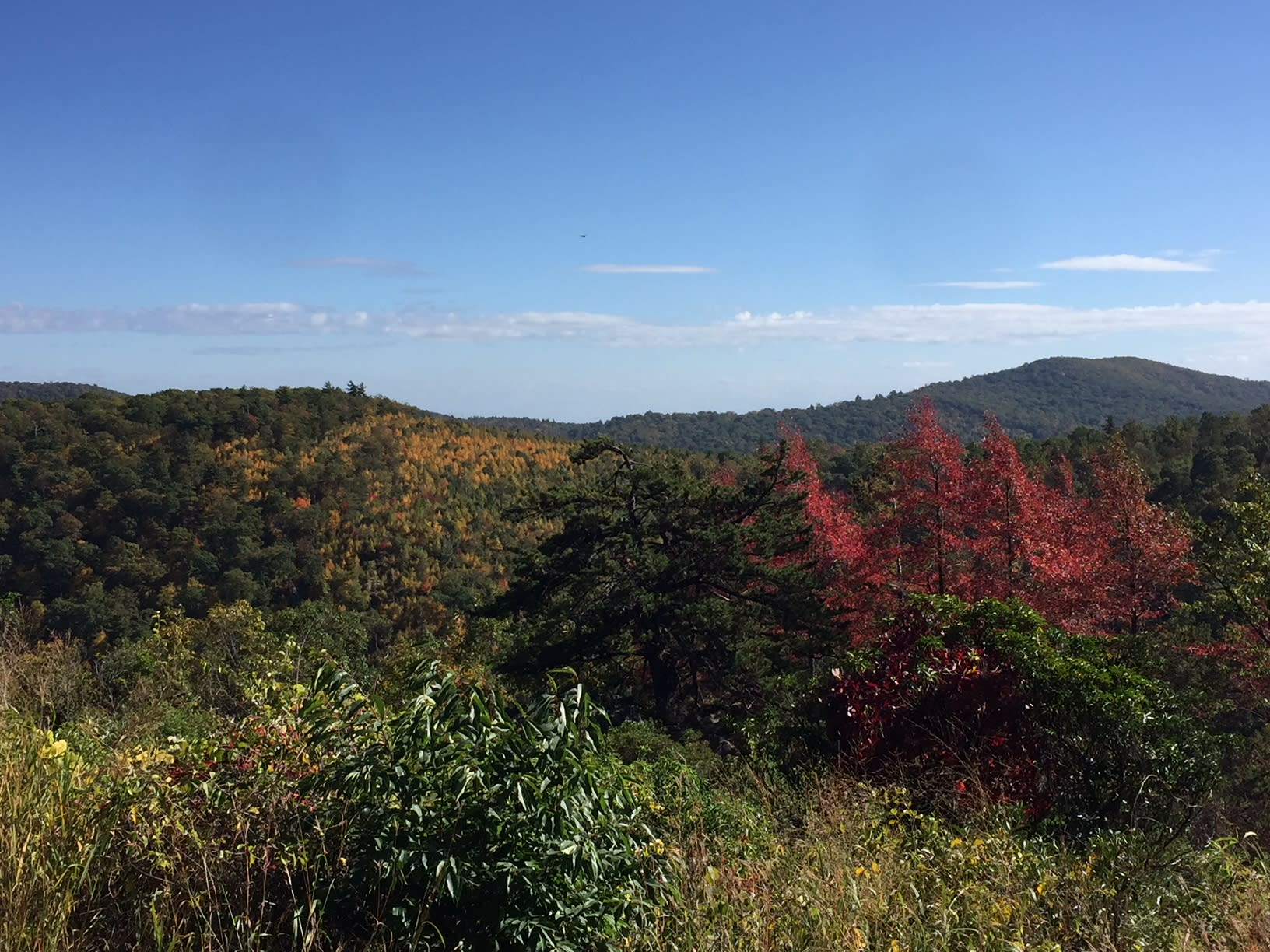Shenandoah Skyline Fall Colors