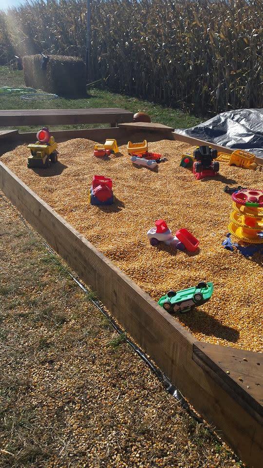 Govin's Corn Maze Activities - By: Emily Steines