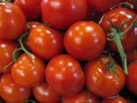 Orzo Stuffed Tomatoes