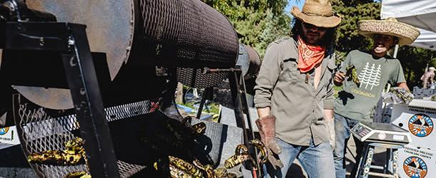 Boulder Farmers Market Chiles