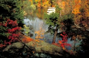 Beautiful fall scenes in nature present themselves as you head into the woods.