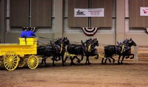 Draft Horse Show and Pull