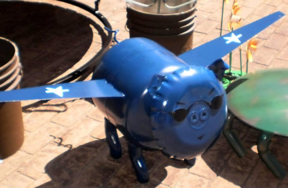 pig plane