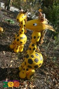 Giraffe Pumpkins