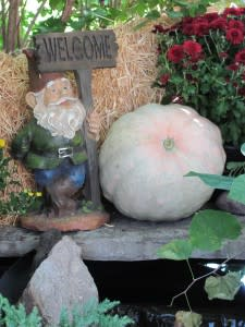 Here's a friendly little gnome, welcoming visitor's to the Botanical Conservatory' Punkin Path!