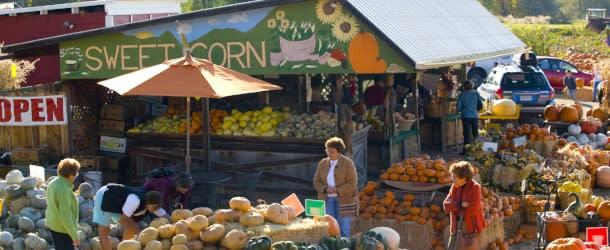 Munson Farm Stand