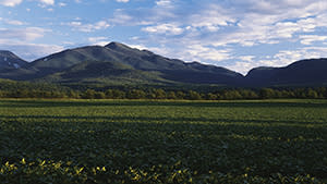 Algonquin Mountain and Indian Pass