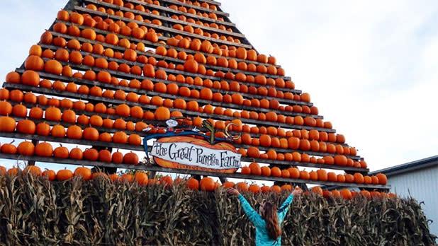 Pumpkin tower at the Great Pumpkin Farm Fall Festival