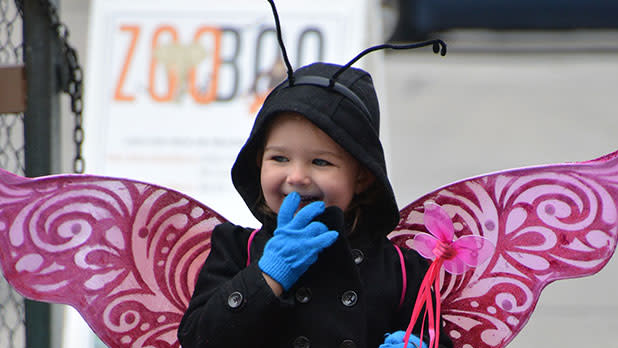Child dressed up as a bug with wings at ZooBoo hosted by Seneca Park Zoo