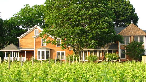Shinn Estate Vineyards