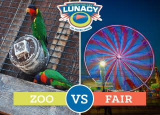 Lehigh Valley Zoo vs. The Great Allentown Fair