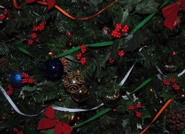 Ireland's Christmas Tree