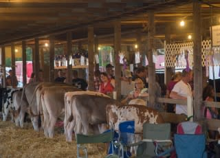 Schnecksville Fair June 19, 2015-16-IMG_0536