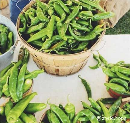Fresh green chile in Albuquerque